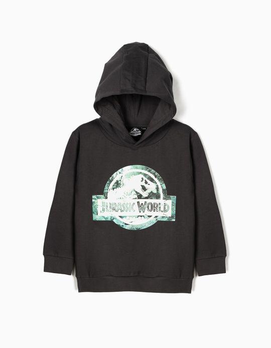 Sweatshirt para Menino 'Jurassic World', Cinza
