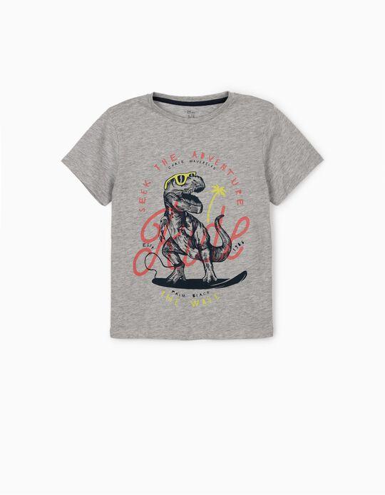 Camiseta para Niño 'Dinosaur', Gris