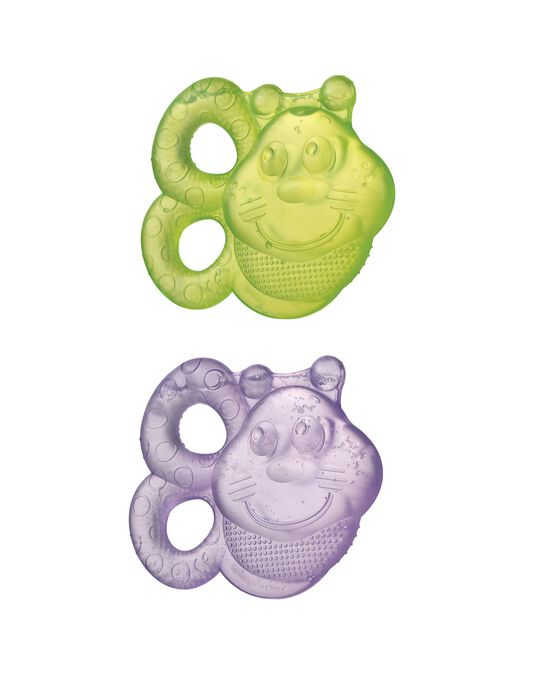 Bee Water Teether by Playgro, 2 Pieces