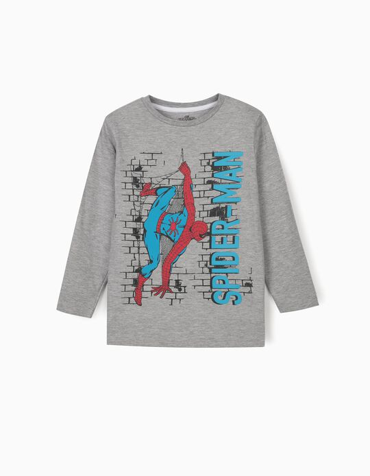 Long Sleeve Top for Boys, 'Spider-Man', Grey