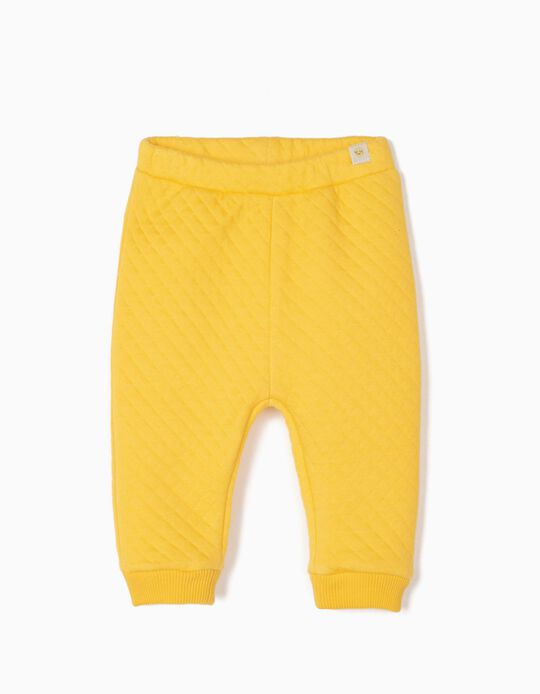 Calças Acolchoadas para Recém-Nascido, Amarelo