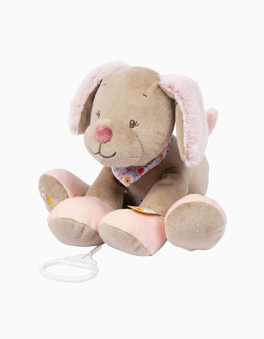 Musical Soft Dog Koala Iris Nattou