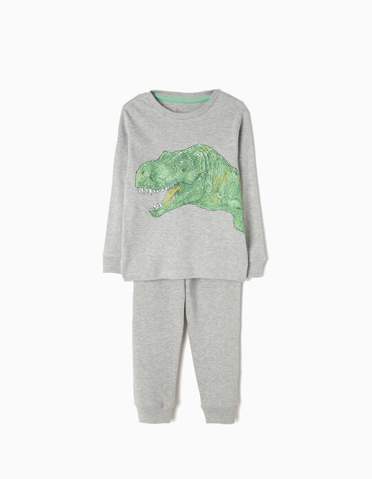 Pijama Manga Larga y Pantalón Dinosaurio
