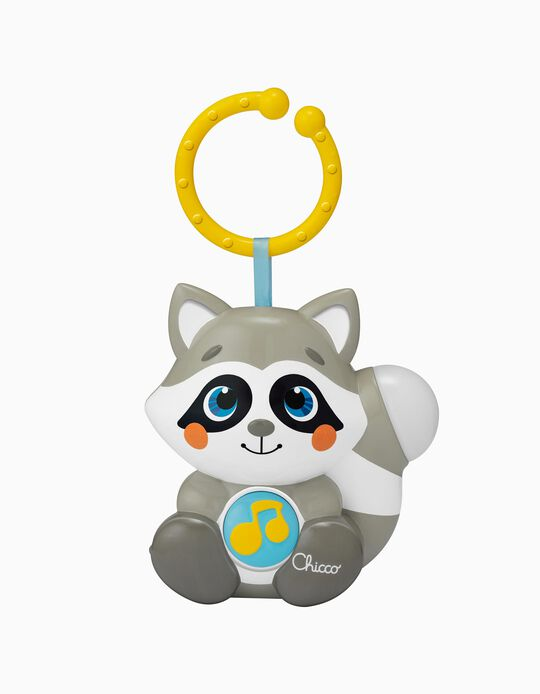 Musical Raccoon, Chicco