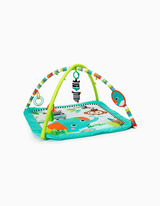 Zig Zag Safari Activity Gym, Bright Stars