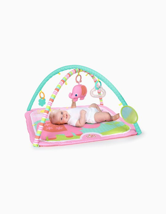 Fanciful Flowers Bright Starts Activity Gym