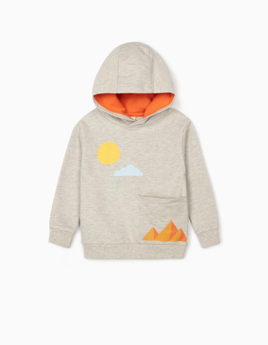 Hooded Sweatshirt for Baby Boys, 'Snake', Grey