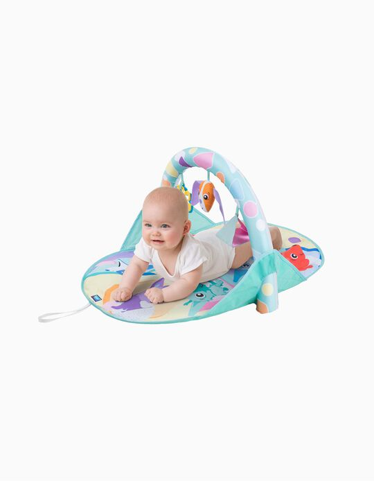 Activity Mat Puppy And Me Playgro 0M+