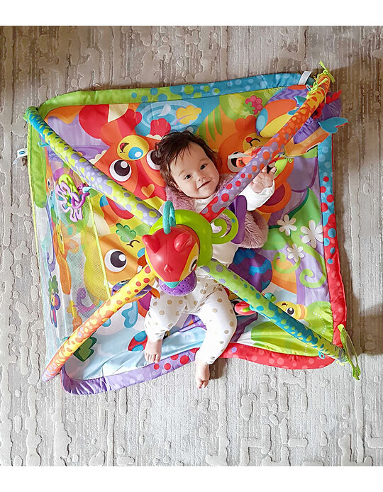 Music & Sound Activity Gym by Playgro