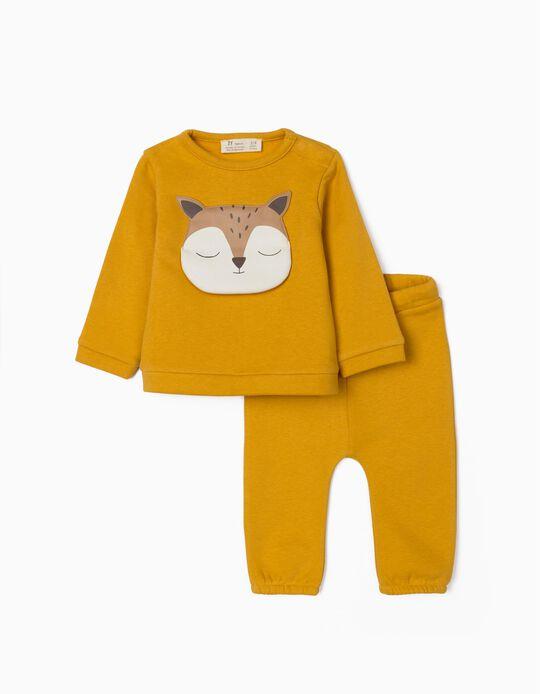 Fato de Treino para Recém-Nascido 'Cute Fox', Amarelo Torrado