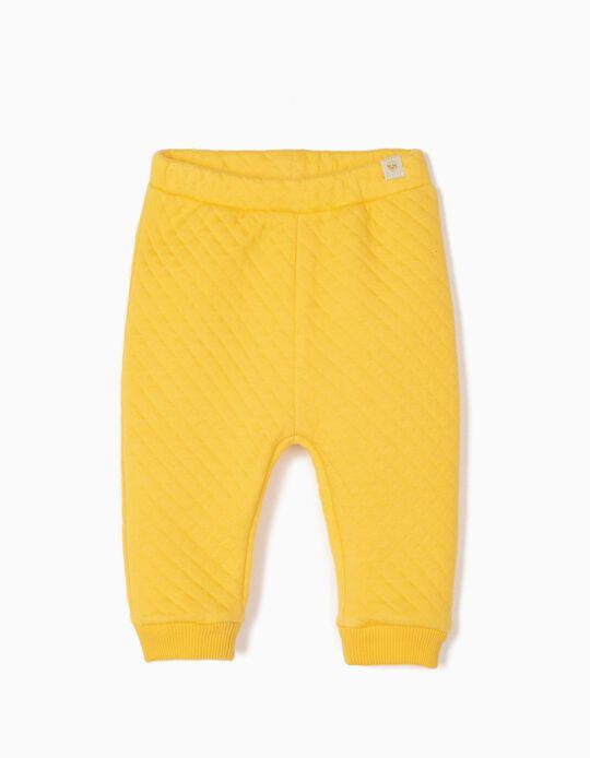 Pantalón Acolchado para Recién Nacido, Amarillo
