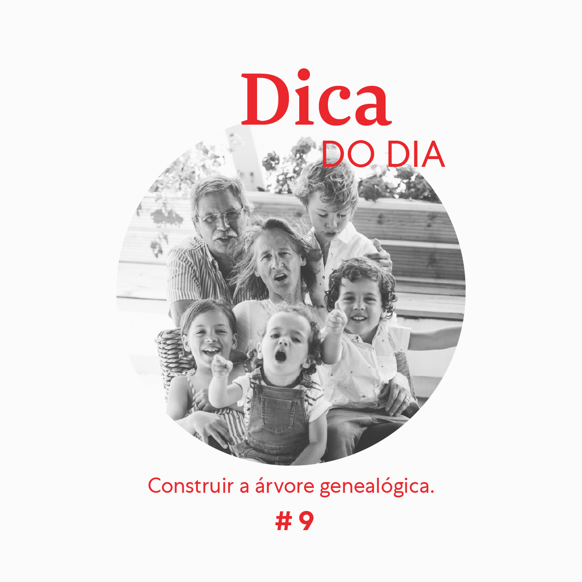 Dica 9 | Zippy We Stay Home Together