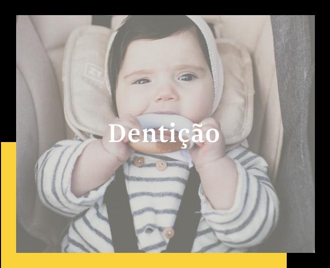 Tema 3: Dentição